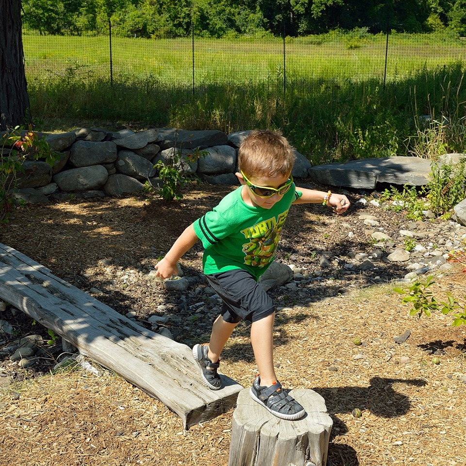 Grasshopper Grove: Gateway to Nature Play at Hudson Highlands Nature Museum in Cornwall, NY