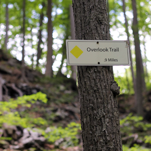 FREE* Hike & Explore! at Teatown in Ossining, NY