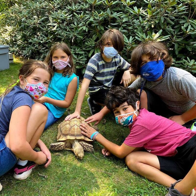 Naturalist School for Grades K-5 at Greenburgh Nature Center in Scarsdale, NY