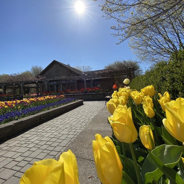 FREE! Orange County Arboretum Botanical Garden in Montgomery, NY