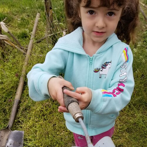 Preschool on the Farm! at Common Ground Farm in Wappingers Falls, NY