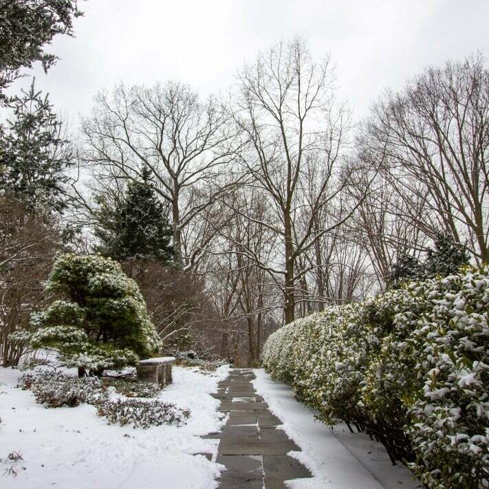 Explore the Gardens at Wave Hill in Yonkers, NY