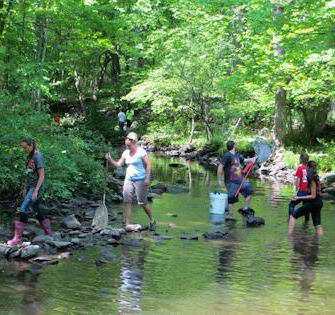 FREE! Sundays Kids in Nature (K.I.N) Club at Brandwein Institute in Port Jervis, NY